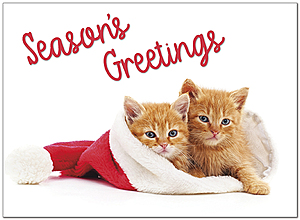 Season's Kittens Holiday Card D9199U-A