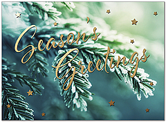 Evergreen Wishes Holiday Card H9164U-A