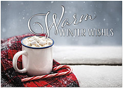 Winter Wishes Holiday Card H9171D-AA