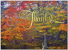 Season of Thanks Thanksgiving Card H9097U-A