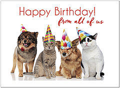 Party Pets Birthday Card D1465U-X