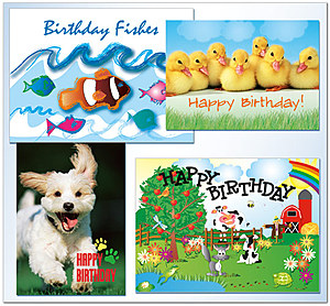 Assortment Packs   Kids Birthday Assortment   AO901