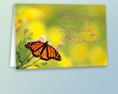 Business Spring and Summer Greeting Cards