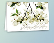 Value All Occasion Greeting Cards